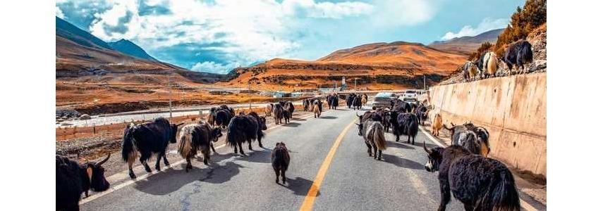 驾领克05上海出发,一路向西进藏,5000公里驾驶感受